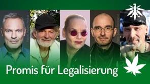 Promis für Legalisierung | DHV-News #269