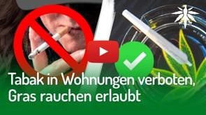 Tabak in Wohnungen verboten, Gras rauchen erlaubt | DHV-News #274