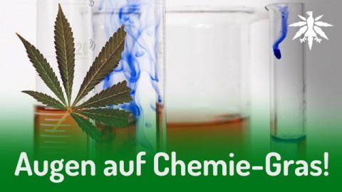 Augen auf Chemie-Gras! | DHV-News #277