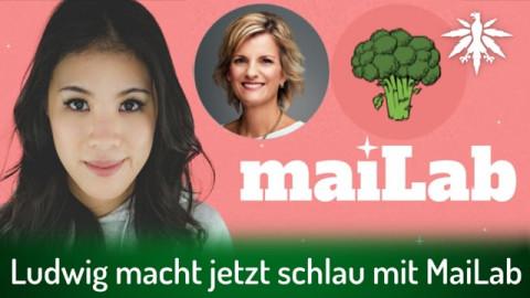 Ludwig macht jetzt schlau mit MaiLab | DHV-News # 292