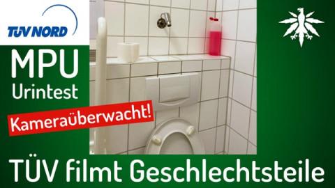 TÜV filmt Geschlechtsteile | DHV-News # 295