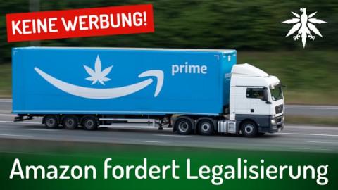 Amazon fordert Legalisierung | DHV-News # 296