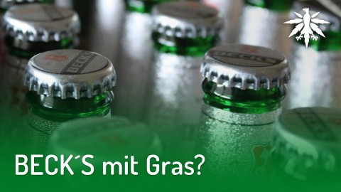BECK´S mit Gras? | DHV-News #189