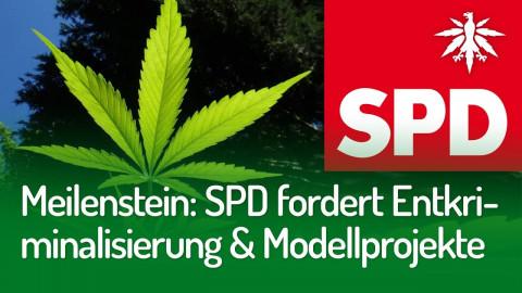 Meilenstein: SPD-Fraktion für Entkriminalisierung und Modellprojekte | DHV-News #237