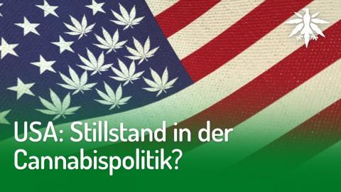 USA: Stillstand in der Cannabispolitik? | DHV-News #222