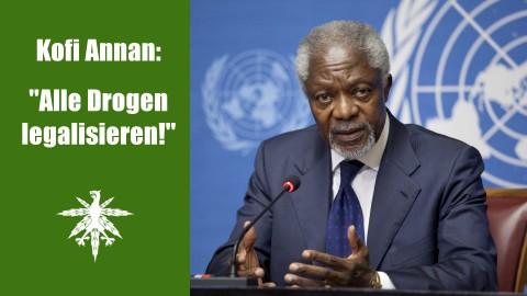 Kofi Annan fordert Legalisierung aller Drogen | DHV News #69