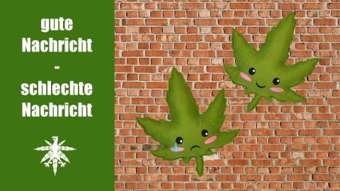 Legalizer rennen gegen die Wand - und nehmen wieder Anlauf | DHV News #65