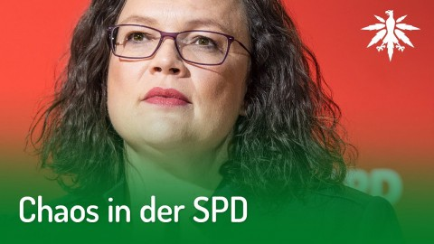 Chaos in der SPD | DHV-News #191