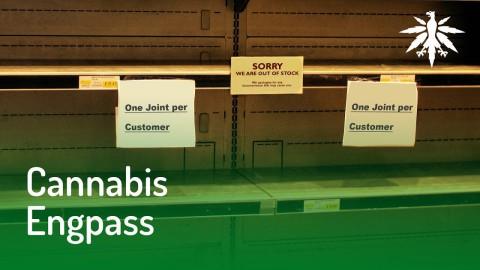 Versorgungsengpässe bei medizinischem Cannabis | DHV News #130