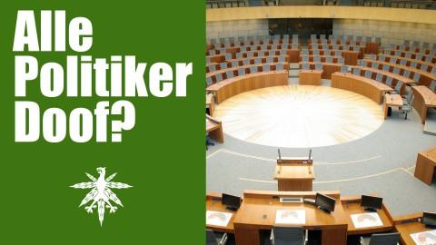 Landtagswahlen: Alle Politiker doof? | DHV News #71