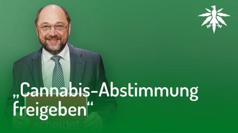 Martin Schulz würde Cannabis-Abstimmung freigeben | DHV News #135