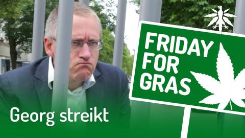 Georg streikt | DHV-News #247