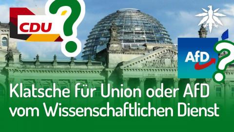 Klatsche für Union oder AfD vom Wissenschaftlichen Dienst | DHV-News #236