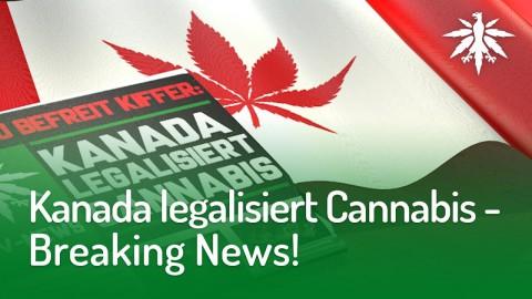 Kanada legalisiert Cannabis - Breaking News! | DHV-News #170