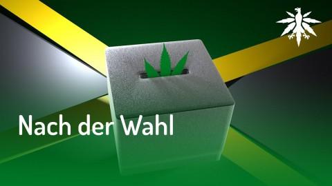 Nach der Wahl | DHV News #138