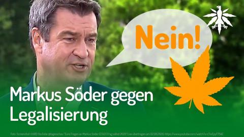Markus Söder gegen Legalisierung | DHV-News #259