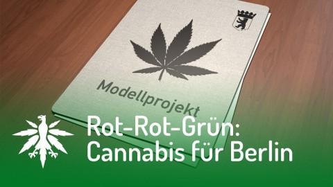 Rot-Rot-Grün will Cannabis in Berlin verteilen   DHV News #101