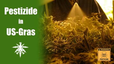 Pestizide in legalem US-Gras | DHV News #59