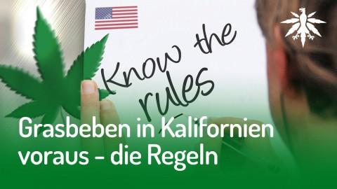 Grasbeben in Kalifornien voraus - die Regeln | DHV News #146