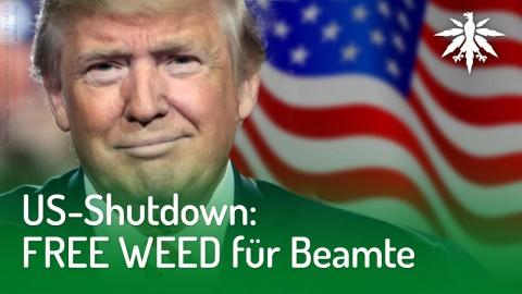 US-Shutdown: FREE WEED für Beamte | DHV-News #193