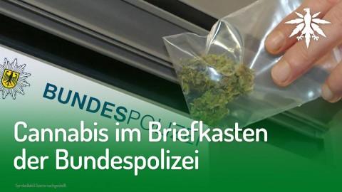 Cannabis im Briefkasten der Bundespolizei | DHV-News #209