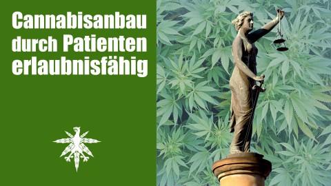 Wichtiges Urteil: Cannabisanbau durch Patienten erlaubnisfähig | DHV News #75