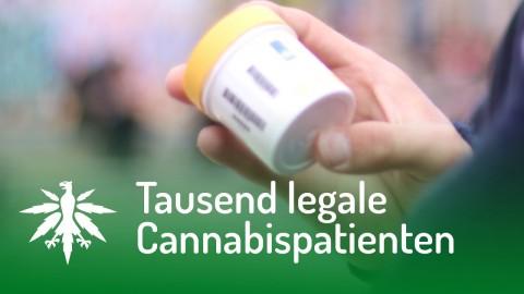 Tausend legale Cannabispatienten | DHV News #106