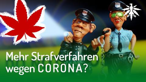 Mehr Strafverfahren wegen Corona? | DHV-News #245