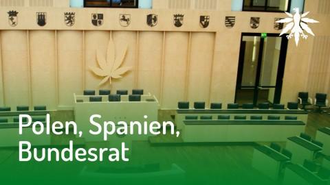 Polen, Spanien, Bundesrat | DHV News #128