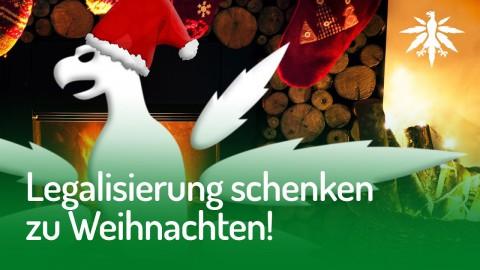 Legalisierung schenken zu Weihnachten! DHV-Weihnachtsspendenkampagne 2017/2018