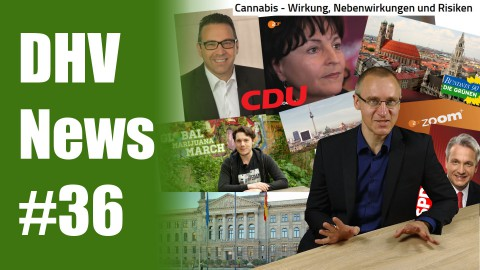 Sensation: CDU-Politiker fordert Legalisierung von Cannabis | DHV News #36