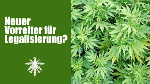 Bremen will Vorreiter für Legalisierung werden | DHV News #72