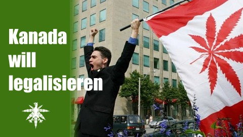 Kanada will legalisieren | UNO verwirrt | DHV News #55