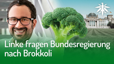 Linke fragen Bundesregierung nach Brokkoli | DHV-News #264