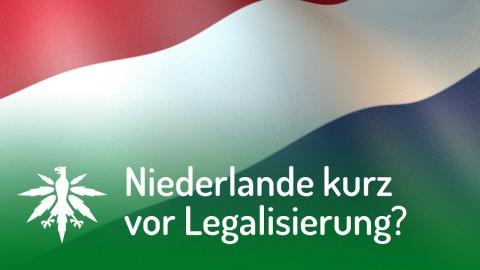 Niederlande kurz vor Legalisierung? | DHV News #113