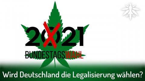 Showdown: Wird Deutschland die Legalisierung wählen? | DHV-News # 308