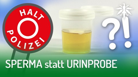 SPERMA statt URINPROBE | DHV-News #210