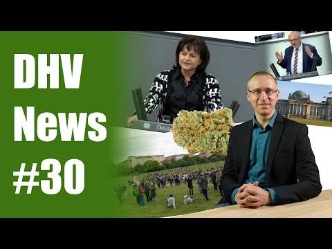 Mortlers lustige Welt | Alle Infos zur 0-Toleranz Grenze | DHV News #30