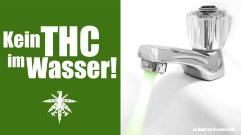 Colorado: Kein THC im Trinkwasser | DHV News #89