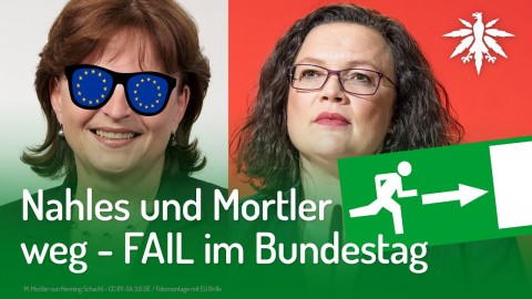 Nahles und Mortler weg - FAIL im Bundestag | DHV-News #208