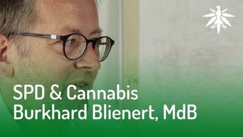 SPD & Cannabis? Interview mit Burkhard Blienert