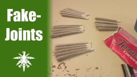 Es handelt sich um Fake-Joints | DHV News #60
