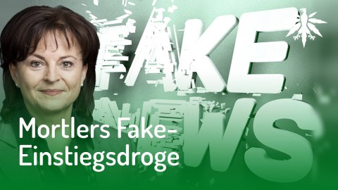 Mortlers Fake-News: Cannabis ist Einstiegsdroge | DHV News #123