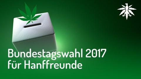Bundestagswahl 2017 für Hanffreunde   DHV News #136