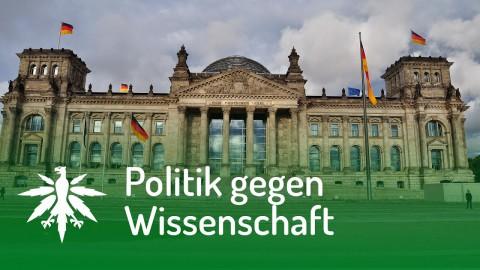 Bundestag gegen Strafrechtsprofessoren | DHV News #119