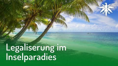 Legalisierung im Inselparadies | DHV-News #179