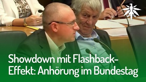 Showdown mit Flashback-Effekt: Anhörung im Bundestag | DHV-News #171